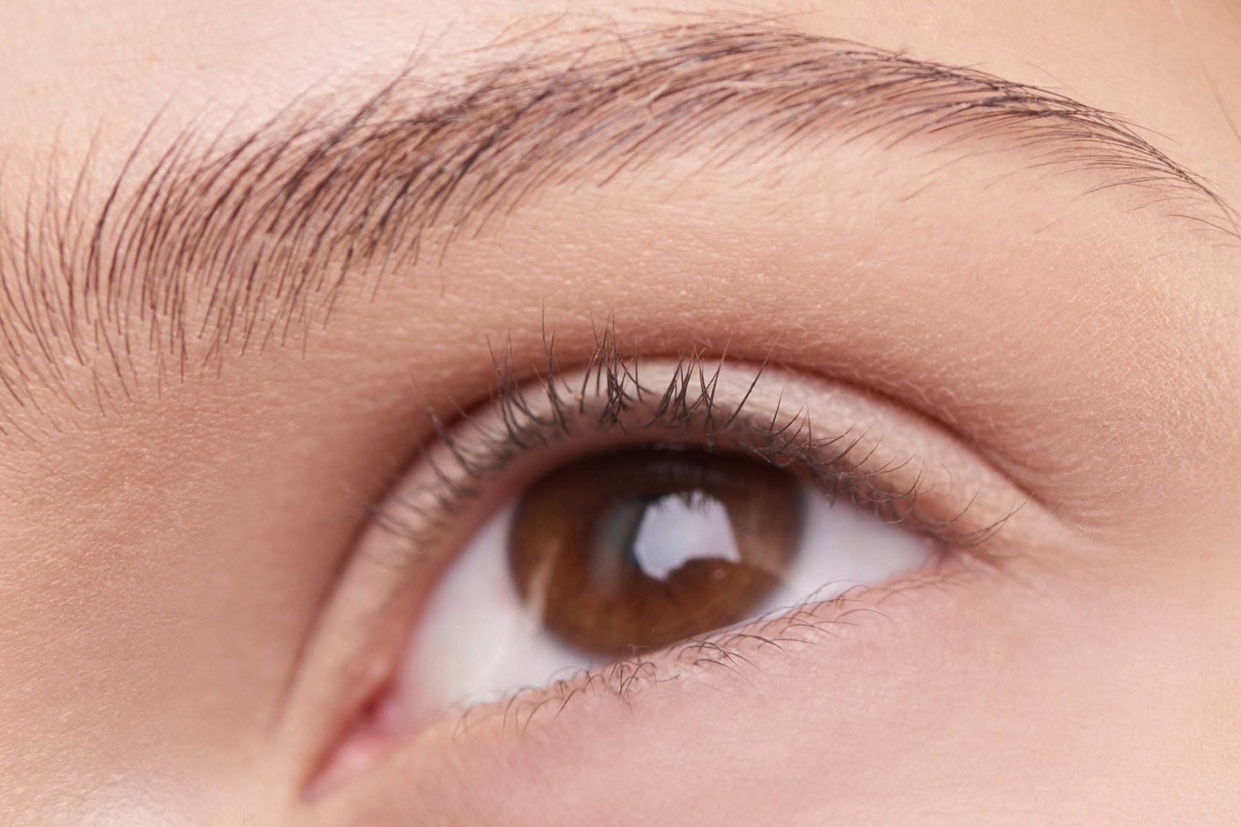 close up of ladies eyelashes and brow